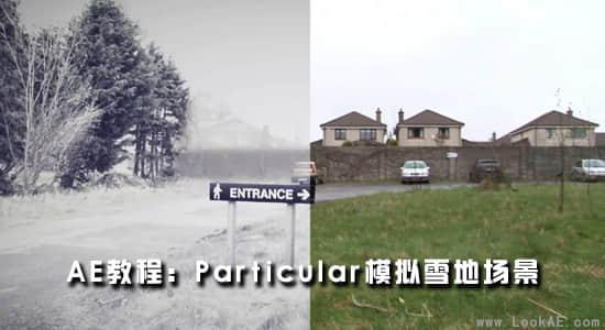 AE教程:粒子 Particular 模拟雪地场景插图