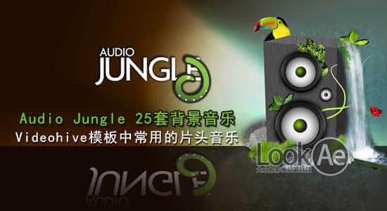 Audio jungle 25