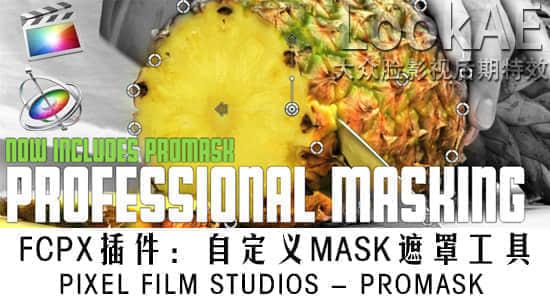 pro-mask