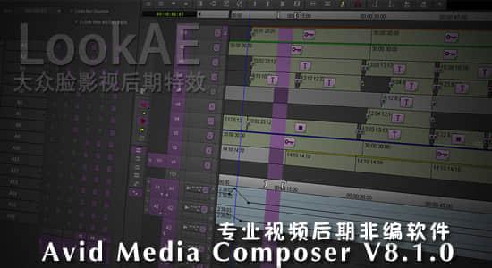 专业视频后期非编软件 Avid Media Composer V8.1.0(Mac/Win)