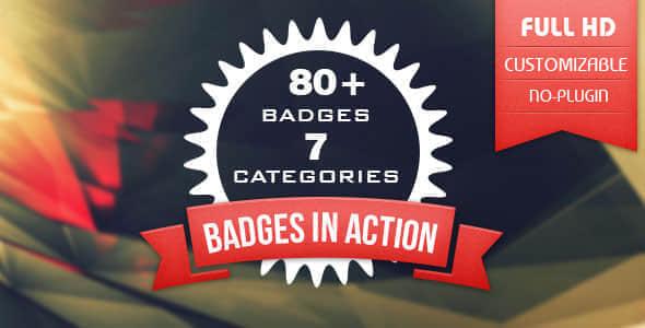 80+ Badges
