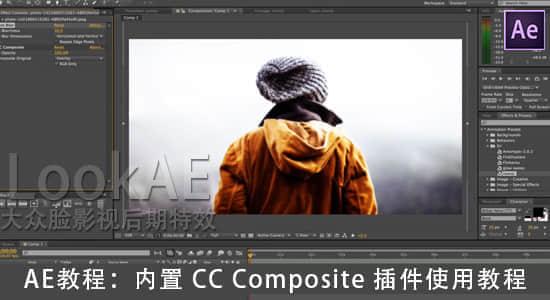 CC-CompositeT