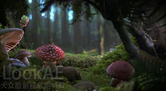 C4D插件:植物生长插件 Xfrog 5.3 for Cinema 4D