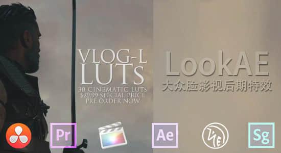 GH4 VLog-L LUTs