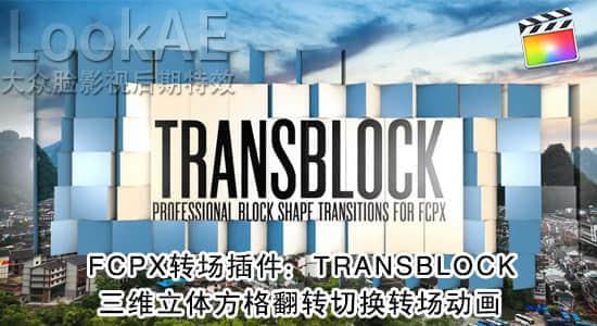 TRANSBLOCK