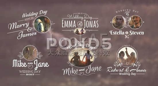 14 Wedding Titles