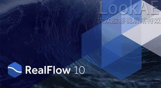 realflow-10