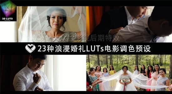 wedding lut