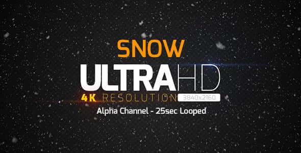 视频素材:冬天下雪场景雪花飘落循环动画 4K带通道 Snow