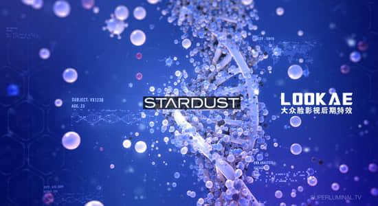 Stardust 13