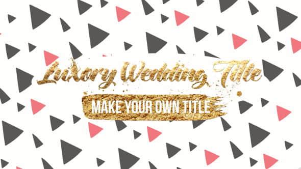AE模板-豪华婚礼标题包装动画 Luxory Wedding Title Kit