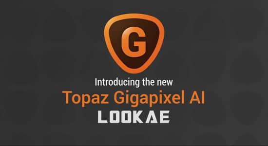 图片无损放大软件 Topaz Gigapixel AI 4.9.0 Win破解版插图