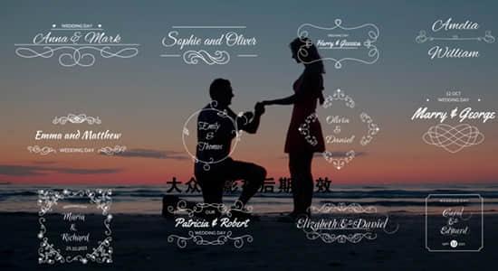 DaVinci Resolve达芬奇模板-12组浪漫小清新爱情婚礼文字标题动画 Wedding Titles插图
