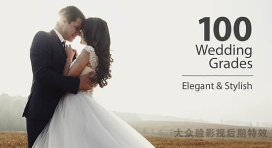 100个MV婚礼电影短片LUTS调色预设 Wedding Color Corrections插图