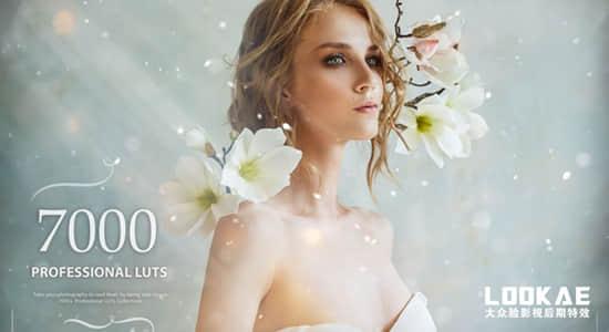 500个梦幻童话时尚婚礼情感食物发光森林爱情LUTS调色预设 7000+ Professional LUTs插图