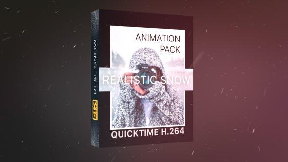 4K视频素材-21个冬日下雪雪花粒子飘散动画 Realistic Snow Effects Pack