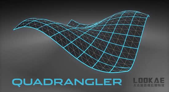 C4D插件-多边形布线优化工具 C4DPlugin Quadrangler v1.2