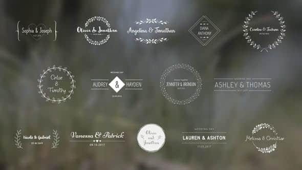 AE模板-复古时尚可爱浪漫爱情婚礼新郎新娘姓名婚期标题动画
