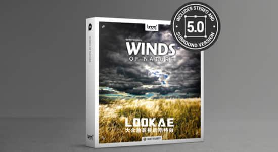 130组大自然风吹雨打环境环绕音无损音效 Winds Of Nature