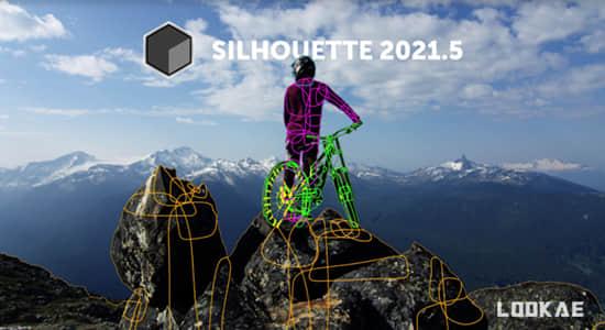 影视后期ROTO跟踪抠像合成软件 Silhouette 2021.5.0 Win + AE/PR/VEGAS/OFX/达芬奇插件